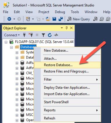 Solution1 - Microsoft SQL Server Management Studio - Object Explorer - Databases - Restore Database