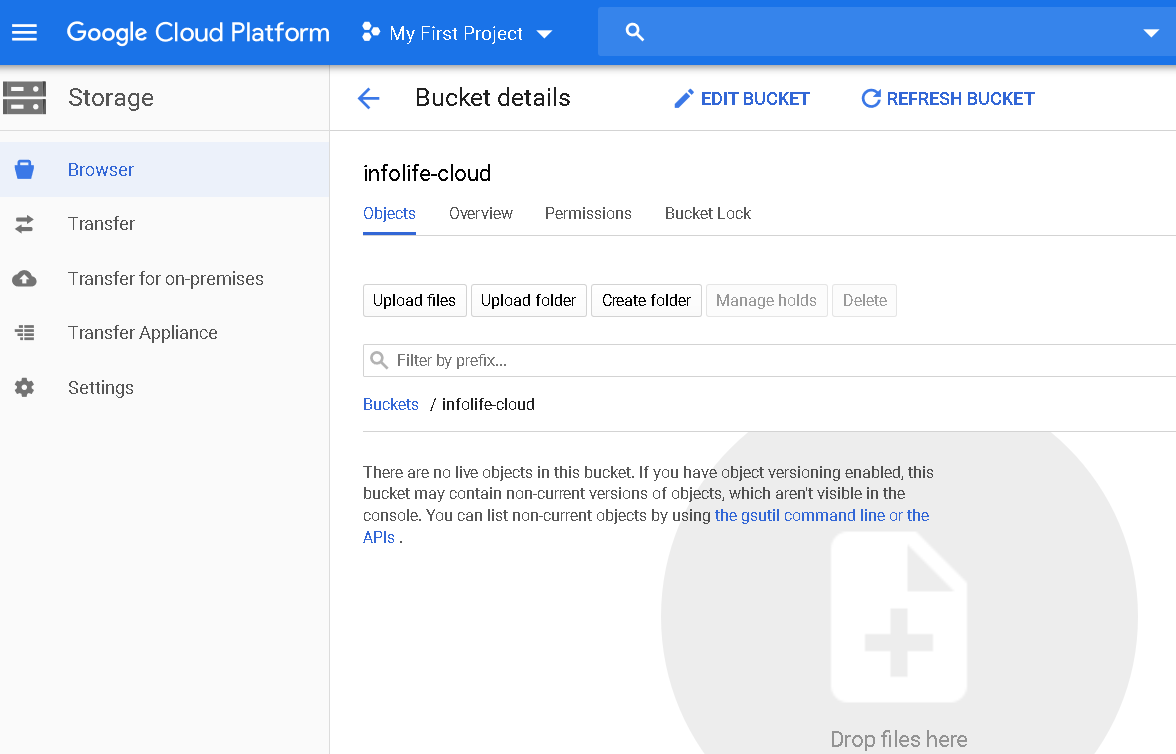 Upload a file in the cloud storage bucket